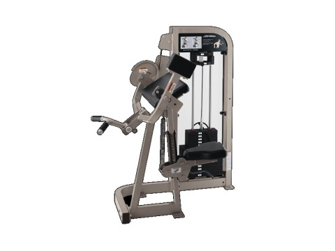 LIFE FITNESS SERIA PRO 2 – BICEPS CURL