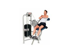 LIFE FITNESS SERIA PRO – LOW BACK EXTENSION